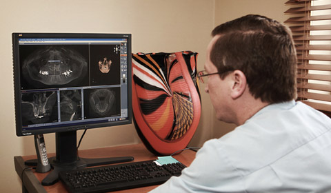 Examining 3D images taken using the Sirona Galileos CT Scanner